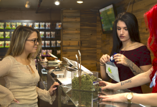 Why is Opening a Cannabis Dispensary Right Now Helpful?